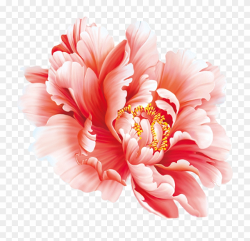 Floral Design Flower Painting In Watercolor Peony Chinese - Peony Flower Chinese Painting png image transparent background