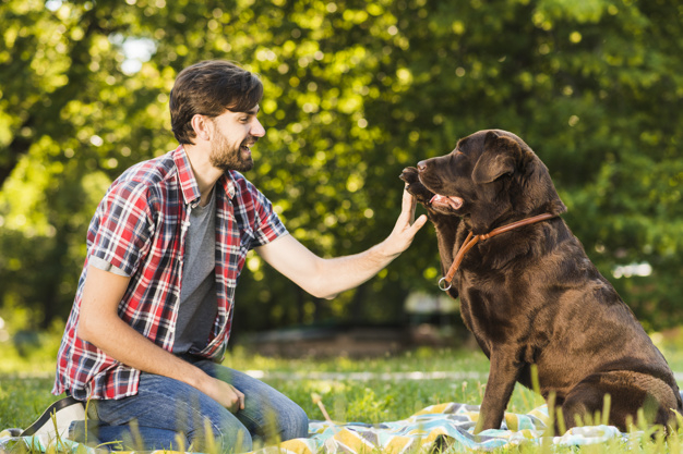 Side view of a smiling young man having fun with his dog in garden - Nohat  - Free for designer