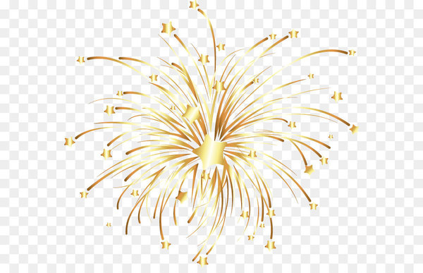 Fireworks Euclidean vector - Vector golden fireworks  png image transparent background