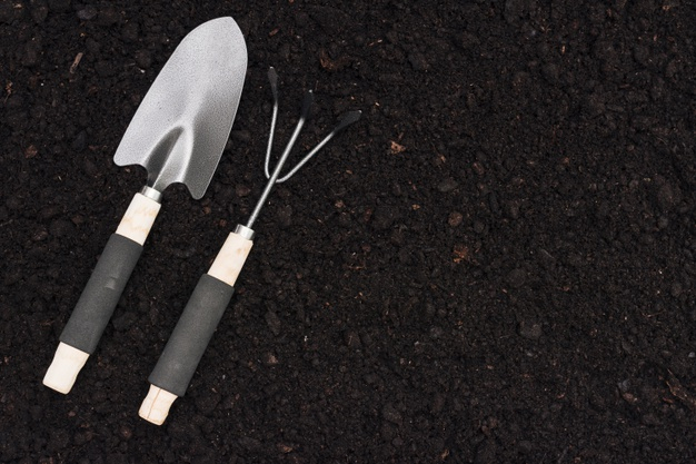Top View Gardening Tools On The Ground Free Photo Nohat