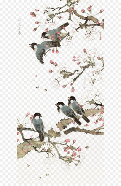 China Bird-and-flower painting Chinese art Chinese painting - Bird background  png image transparent background