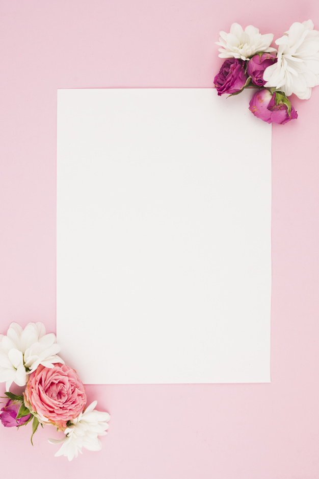 Blank White Paper With Fresh Flowers Against Pink Background Nohat