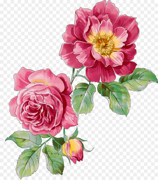 Ink wash painting Watercolor painting Flower - Peony Photos  png image transparent background