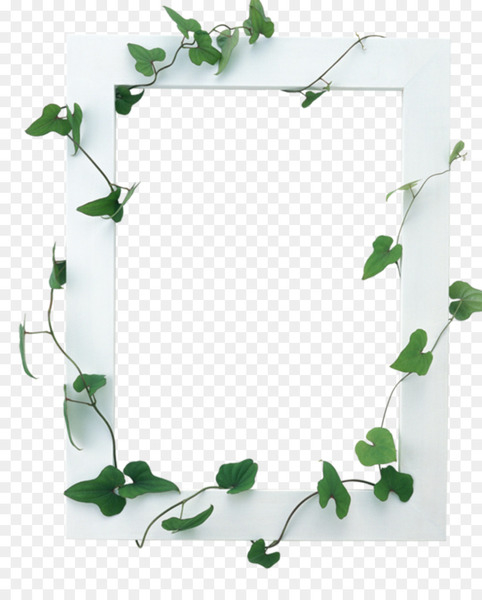 Picture Frames - Vines are available for free download  png image transparent background