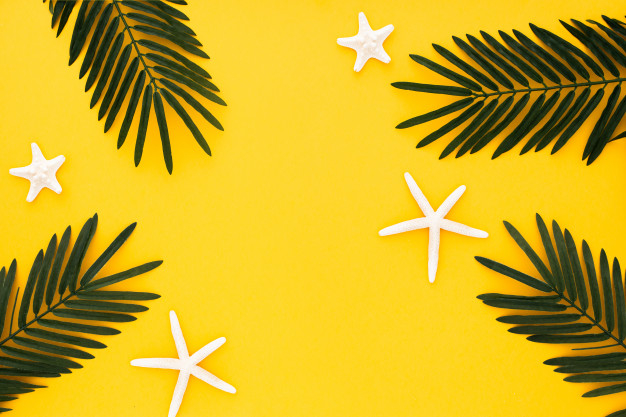 Beautiful Composition With Palm Leaves And Starfishes On Yellow Background Download Now Free Stock Photos On Freepik Nohat Free For Designer Yellow tropical leaves palm exotic flora template vector illustration. beautiful composition with palm leaves
