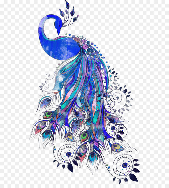Peafowl Drawing Feather Illustration - Vector blue peacock  png image transparent background