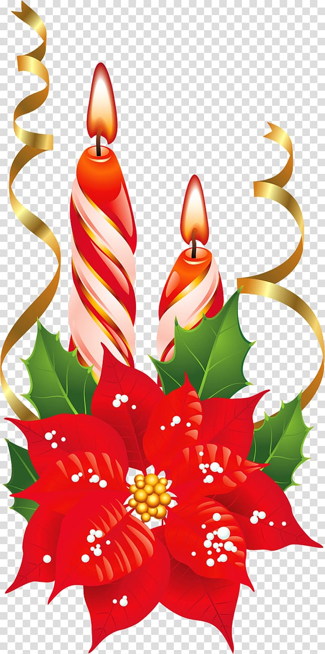 Of Red Candles Poinsettia Christmas Flower Red And White Christmas Candles With Poinsettia Transparent Background Png Clipart Nohat Free For Designer