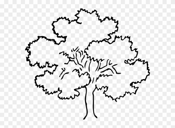 Black And White Family Tree Clipart Tree Black And White Png Free Transparent Image